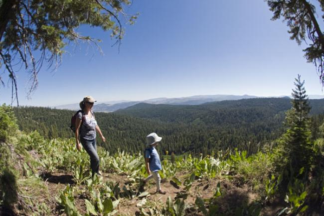 Hikers near the Lake of the Woods overlooking Sierra Valley in Tahoe National Forest, California.  Hikers near the Lake of the Woods overlooking Sierra Valley in Tahoe National Forest, California.