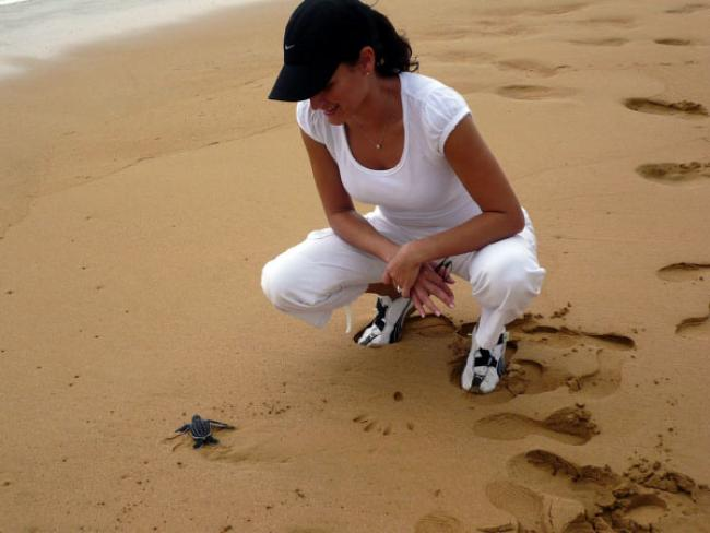 Baby leatherback, San Miguel Natural Reserve  Baby leatherback, San Miguel Natural Reserve