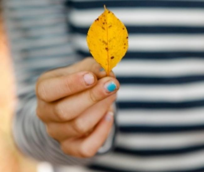 A girl holds a leaf at The Preserve, CT