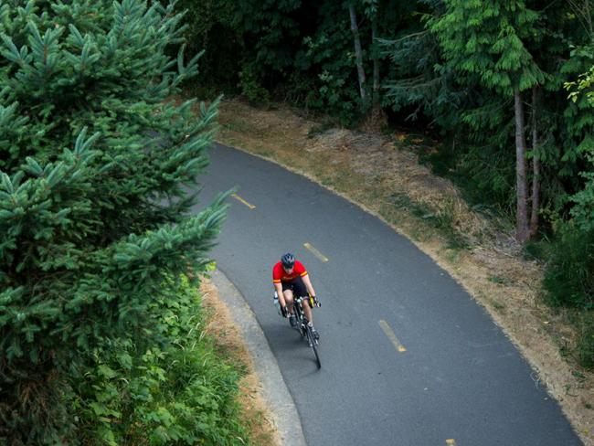 A cyclist rides on a bike trail through the woods