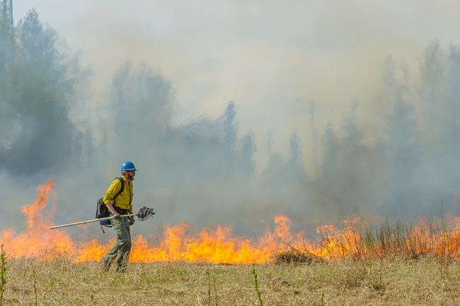 A wildland firefighter monitors a fire during a controlled burn at a wildlife refuge in Alaska.