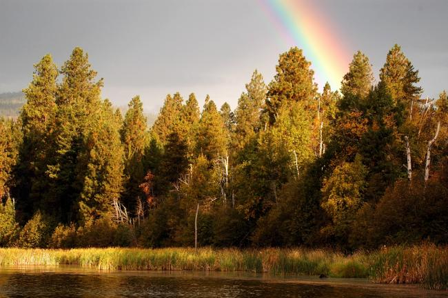 Rainbow over McArthur Lake Wildlife Management Area near Sandpoint, ID