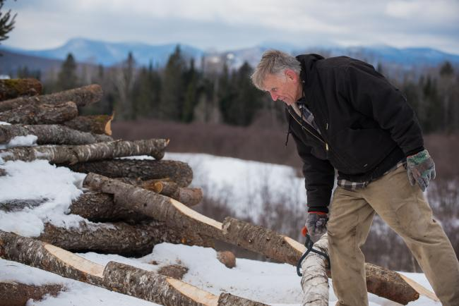 Rick Alger with a pile of logs