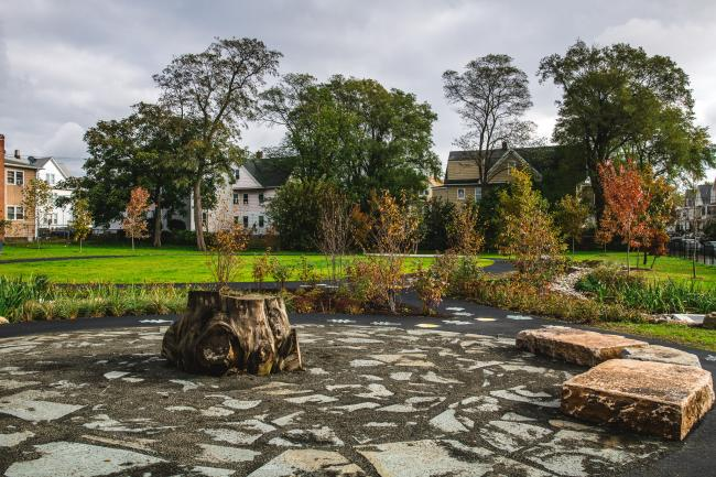 A tree stump in the middle of a park seating area
