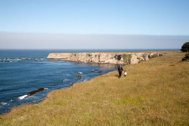 Stornetta Public Lands, Point Arena, California.