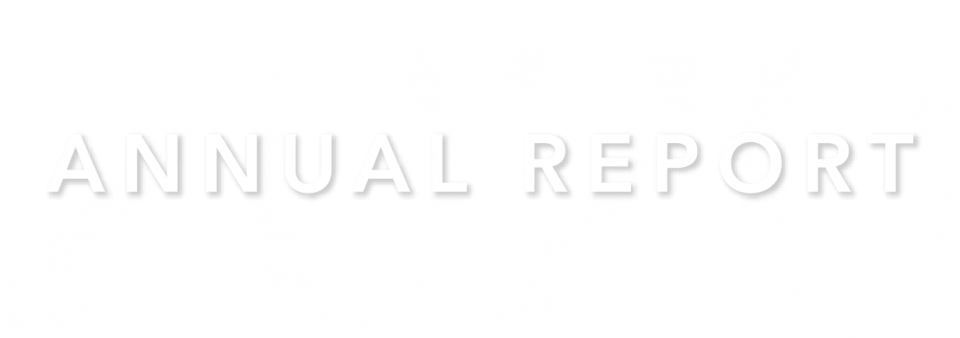 2020 Annual Report Header