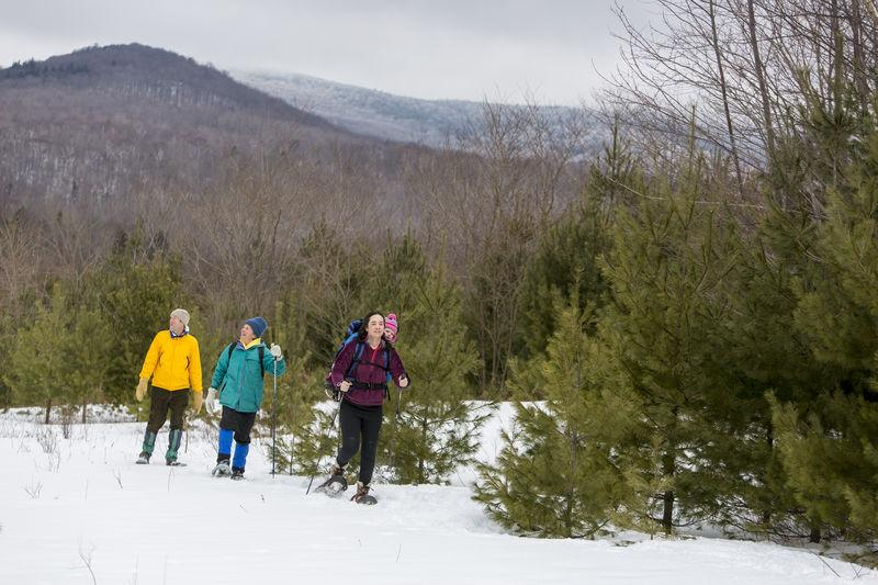 Snowshoers in Vermont's Green Mountains