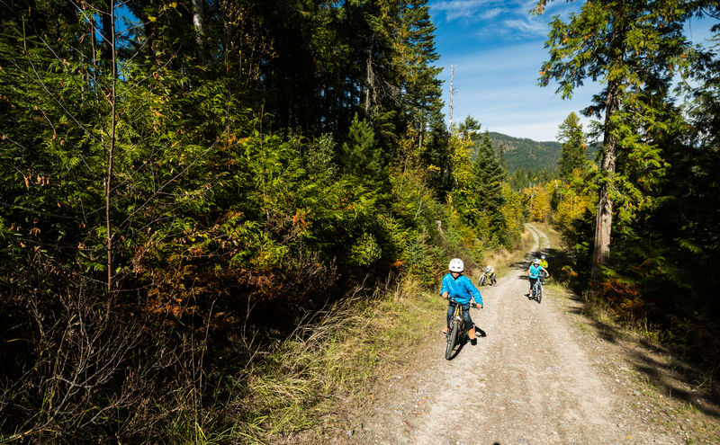 Kids mountain biking in the Haskill Basin, Whitefish, Montana.